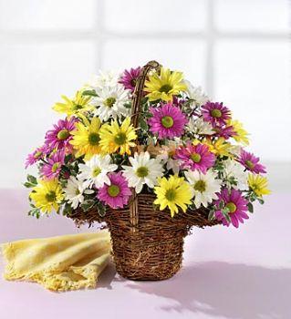 Cesta flor de margaritas..